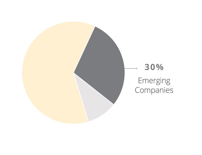 Emerging Companies Pie Chart